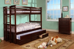 Aiden Twin/Twin Bunk Bed Aiden Twin/Twin Bunk Bed