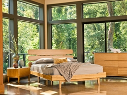 Aria Bamboo Platform Bed The Aria Bamboo Platform Bed is perfect for a smart, crisp look for your bedroom.